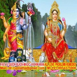 bagalamukhi astrologer tantric remedies