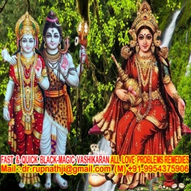 bagalamukhi astrologer tantrik remedies