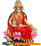 solve your all problems by worlds no 1 astrologer tantrik palmist numerologist vastu expert