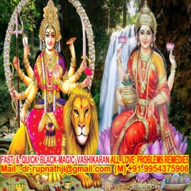 worlds no 1 astrologer tantrik vastu expert